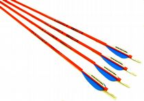 Easton Scout 2 Fiberglass Arrows 28""